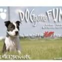 Dog Gone Fun Blog Hop (Day One)